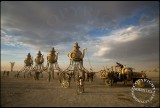 Burning Man 2014 Pt 2: The Lost Tea Party Arrive