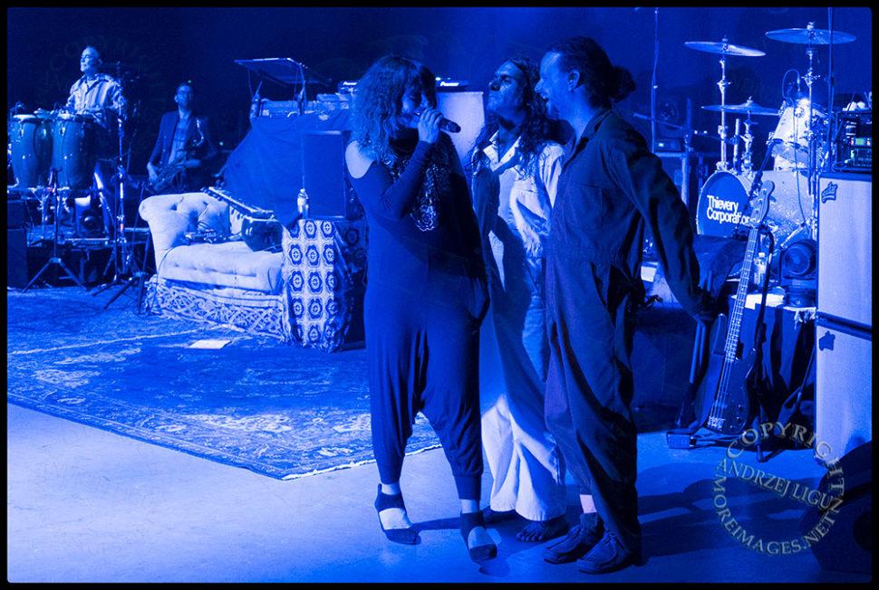 LouLou with Hash and Jeff at the Santa Barbara Bowl