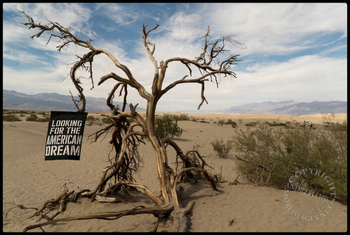 The MAD (MORE American Dreams) Journey, Death Valley, CA