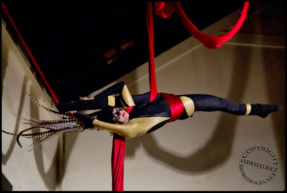 Aerialist Seanna Sharpe performing at the Cirque de Idiotarod Afterparty in Gowanus Ballroom © Andrzej Liguz/moreimages.net. Not to be used without permission