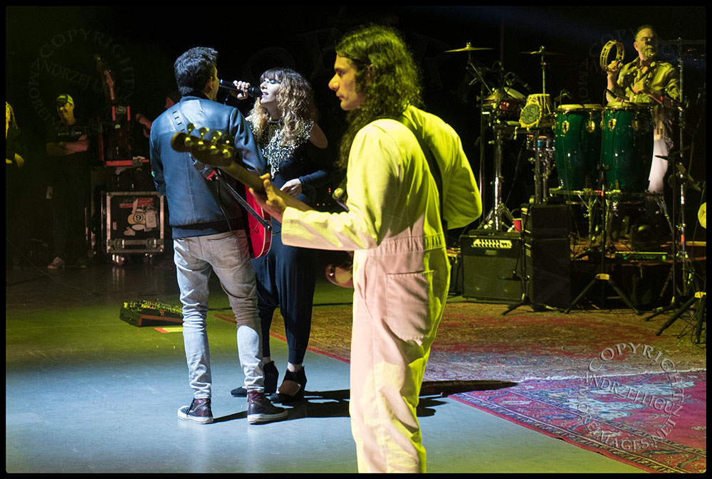 LouLou with Rob and Hash at the Santa Barbara Bowl